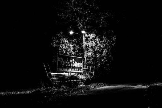 Free stock photo of light, road, night, dark