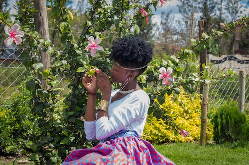 Free stock photo of african american girl, african girl, angel s breath flowers