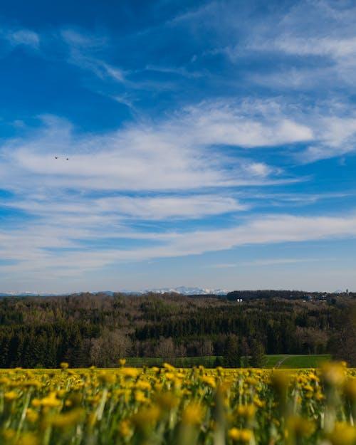 arazi, dağlar, doğa içeren Ücretsiz stok fotoğraf