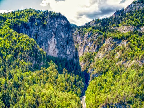 Free stock photo of bicaz, canion, forest