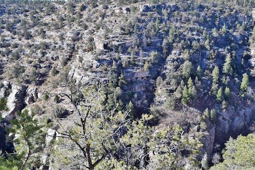 ağaç, ceviz dere, dağ içeren Ücretsiz stok fotoğraf
