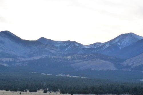 ağaç, dağ, Kaya içeren Ücretsiz stok fotoğraf