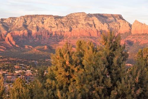 ağaç, akşam Güneşi, dağ içeren Ücretsiz stok fotoğraf