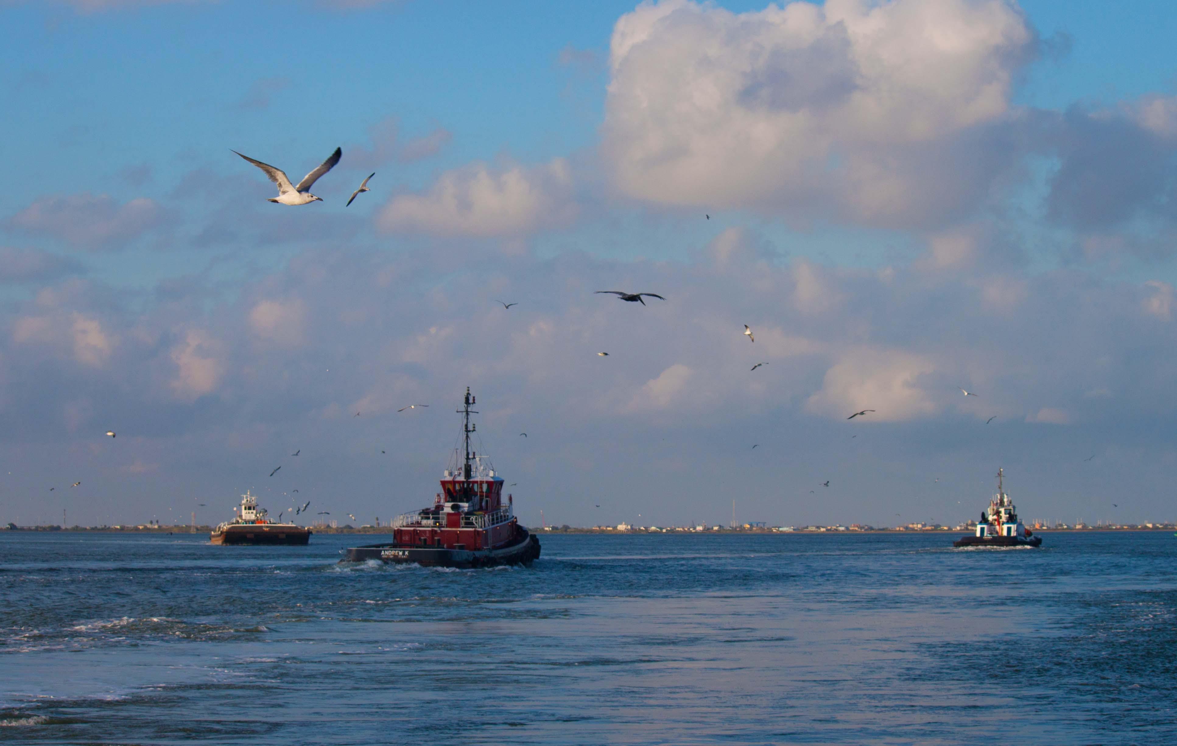 Free stock photo of beach, boat, galveston, ocean