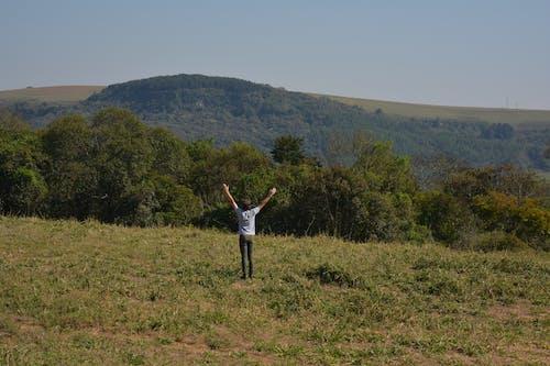 Imagine de stoc gratuită din ã¡rvores, feliz, homen, montanhas