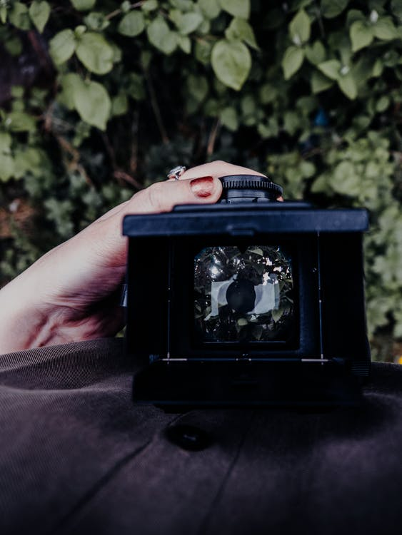 Person Holding Black Camera Taking Photo of Green Plants