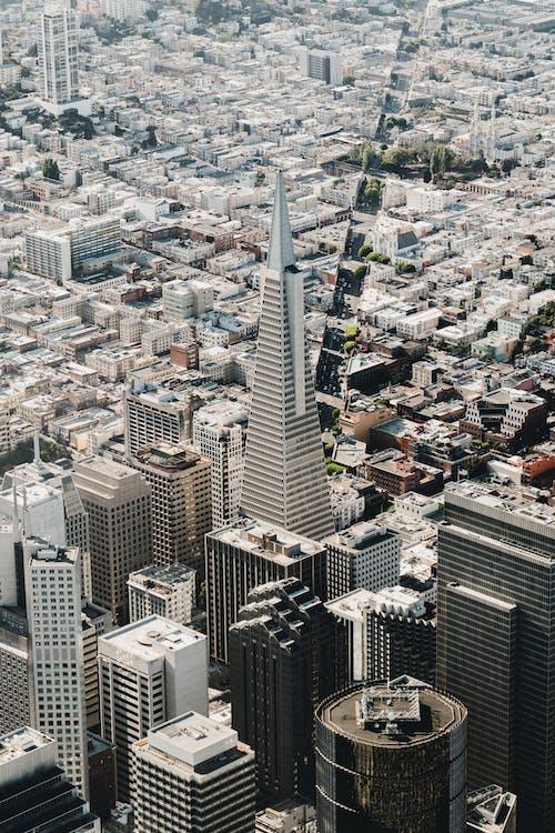 Free stock photo of bay area, california, city