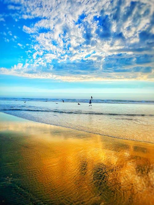 Free stock photo of beach sunset, blue ocean, golden sunset