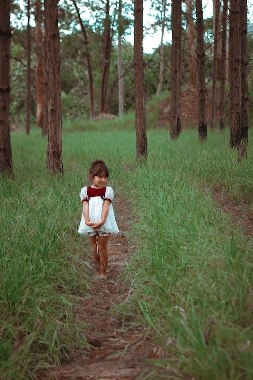 Fotos de stock gratuitas de adorable, arboles, campo