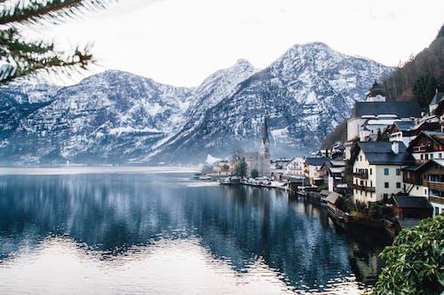 冬季, 凍結的, 城鎮, 天性 的 免費圖庫相片