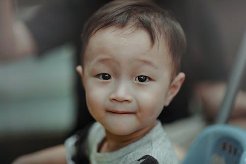 Fotobanka sbezplatnými fotkami na tému bábätko, batoľa, chlapec, človek