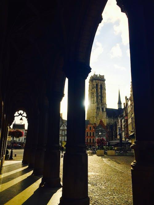 Immagine gratuita di archi, cattedrale, chiesa, mechelen