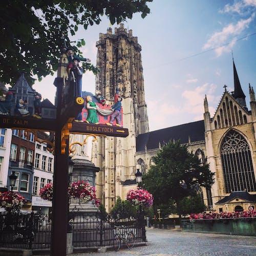 Immagine gratuita di cattedrale, chiesa, città, mechelen
