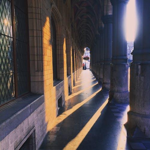 Immagine gratuita di archi, architettura, cattedrale, mechelen