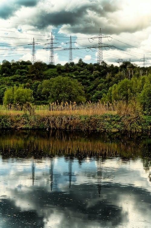 Kostenloses Stock Foto zu baum, bäume, fließenden fluss