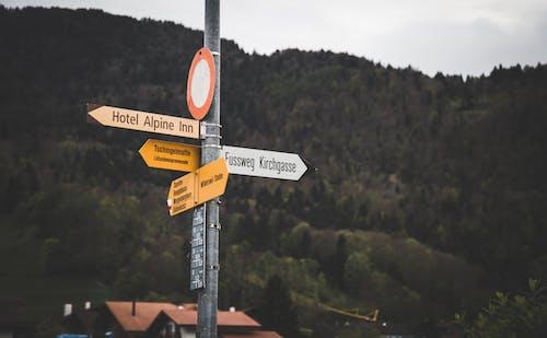 Foto d'estoc gratuïta de adreces, carrer, direcció, indicacions