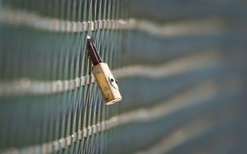 Free stock photo of depth of field, fence, lock