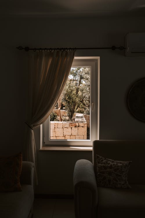 Window View Of Garden From A Room