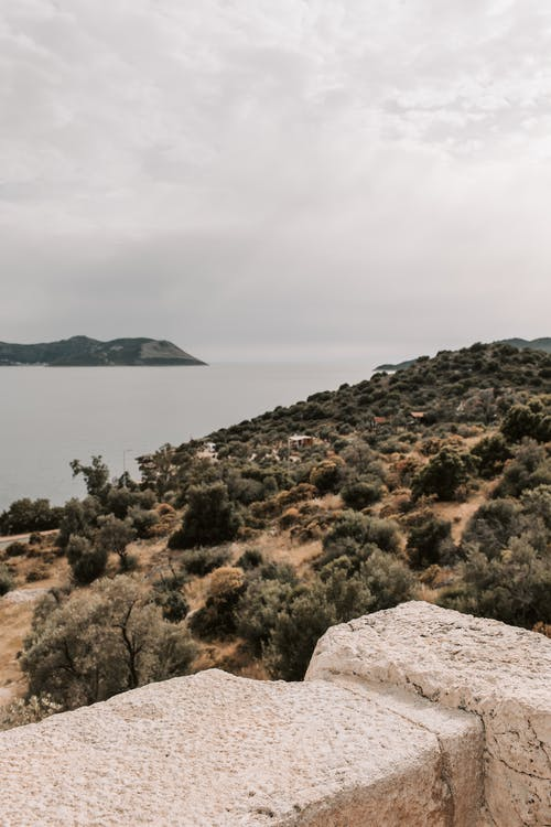 Growing Trees On Mountain Beside Body of Water Under White Cloudy Sky