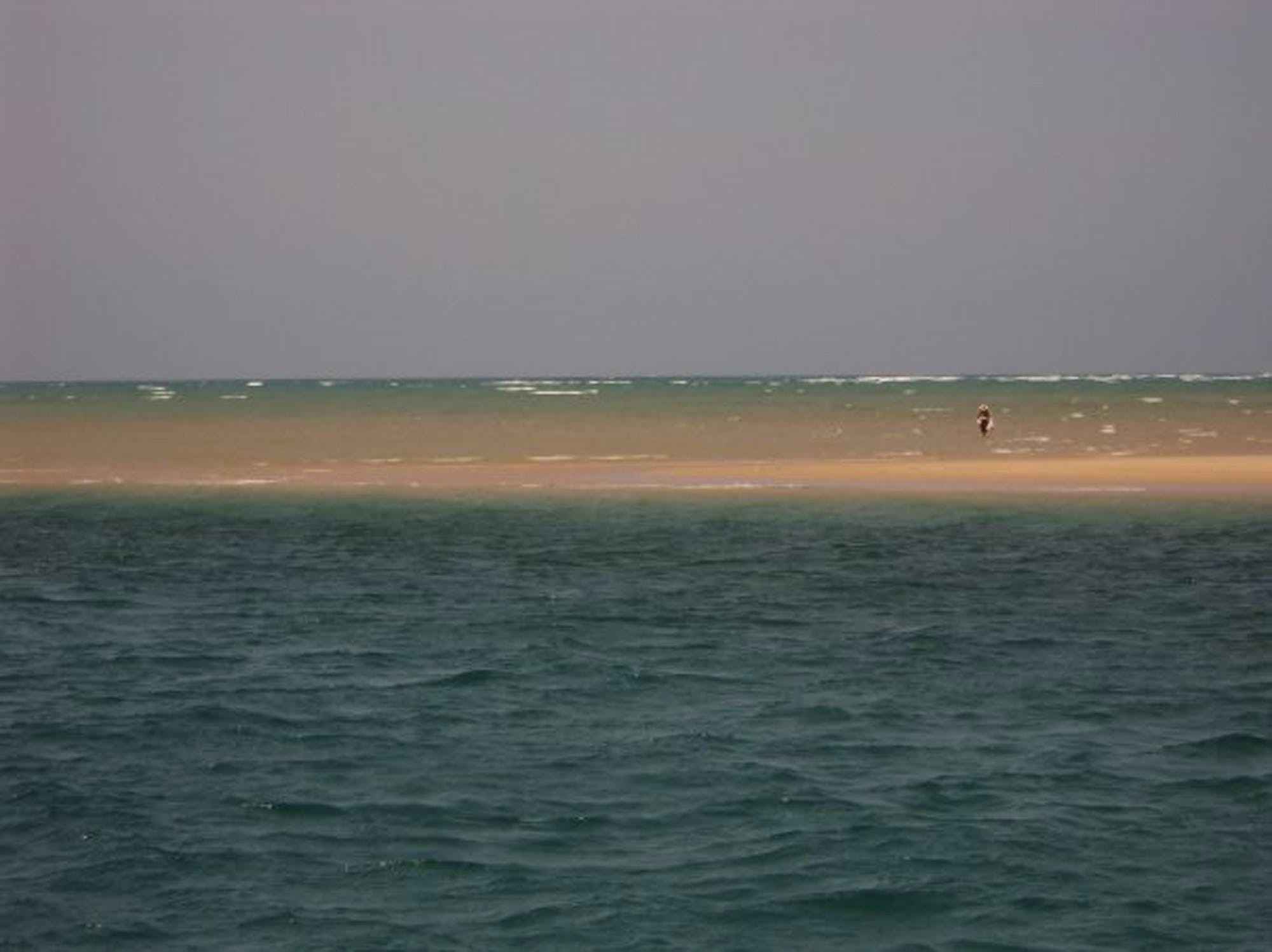 Free stock photo of fishing, nature, man, sand