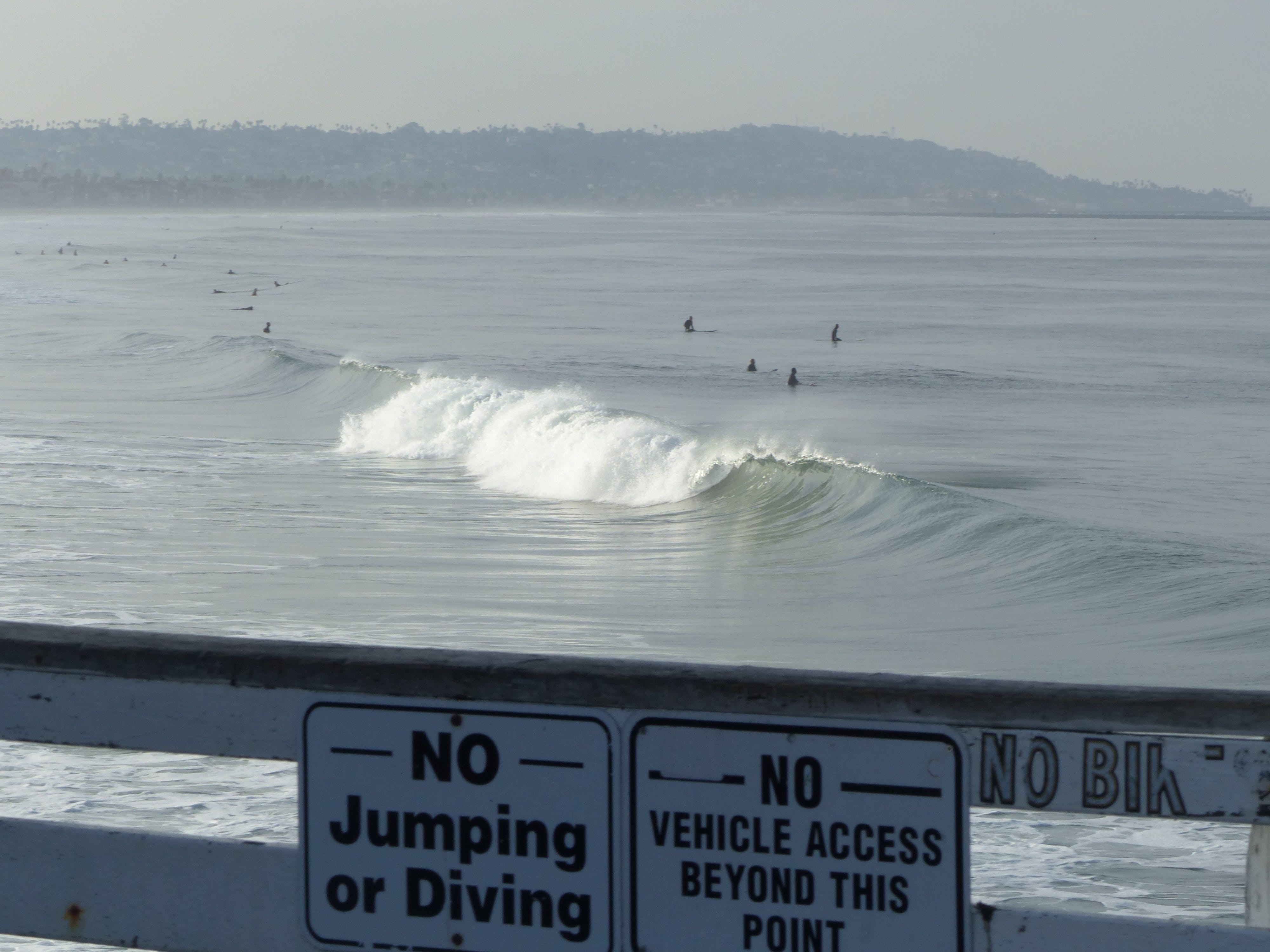 Foto d'estoc gratuïta de acomiadar-se, mar, san diego, surfista