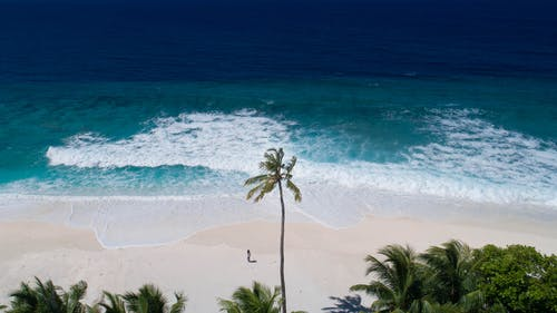 Breathtaking aerial shot of person standing alone on exotic beach with white sand in front of turquoise waving ocean water on sunny day