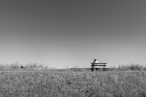 Grayscale Photo of Wooden Bench on Grass Field