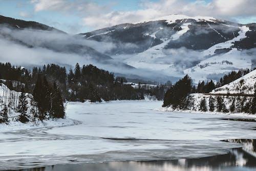 Darmowe zdjęcie z galerii z dolina, drzewa, góra, jezioro