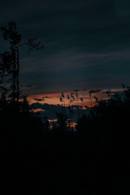 Free stock photo of beautiful sky, beautiful sunset, golden sunset