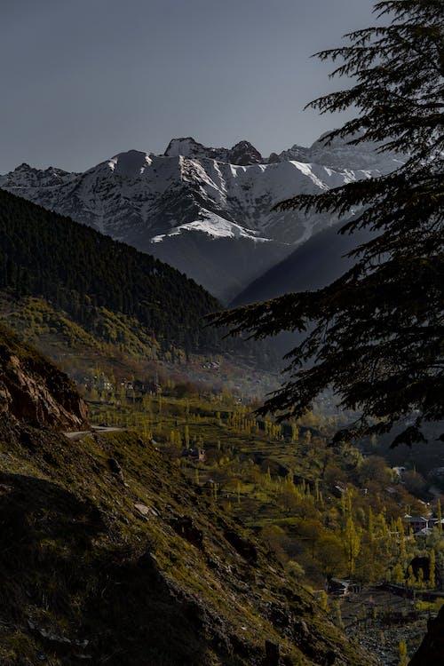 Free stock photo of beautiful landscape, cold, glacier