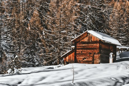 Brown Wooden Cabin In Snowy Landscape Near Forest