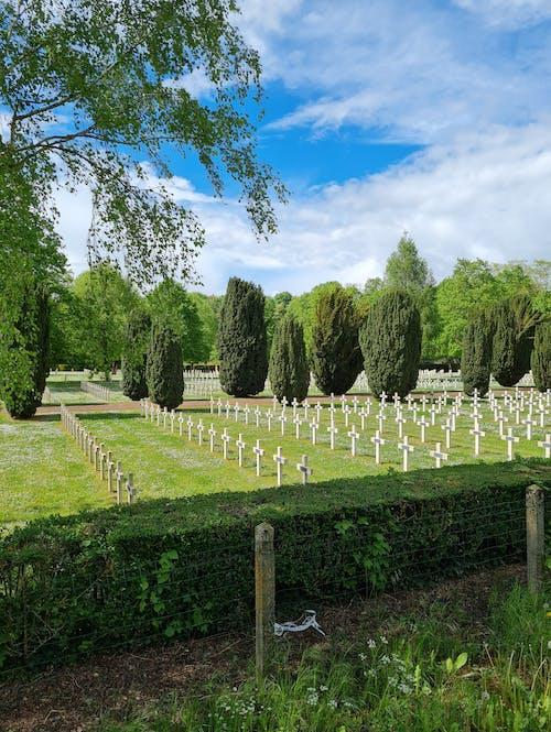 Free stock photo of cemetery, cross, dead