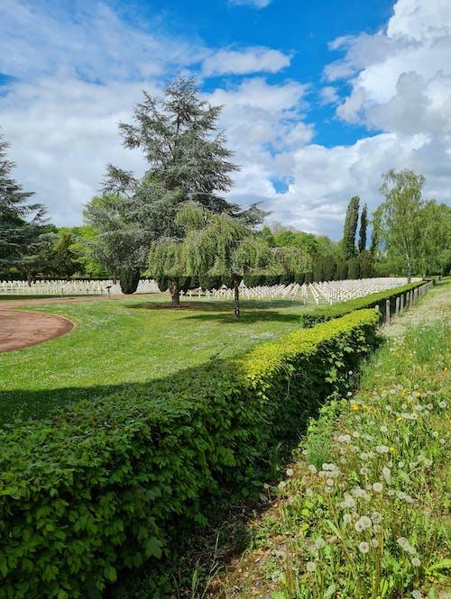 Free stock photo of cemetery, cross, grave