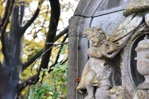 Gratis stockfoto met begraafplaats, droefig, engel, geloof