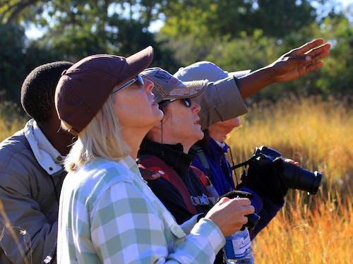 Free stock photo of birding, guided hike, photo safari