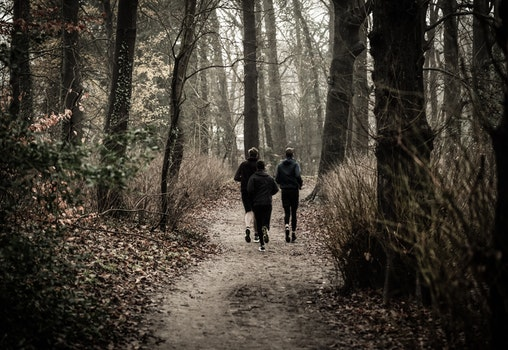 Monochrome Photography of People Jogging Through The Woods