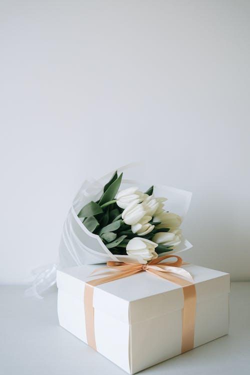 คลังภาพถ่ายฟรี ของ กระดาษ, กระดาษแข็ง, กล่องของขวัญ