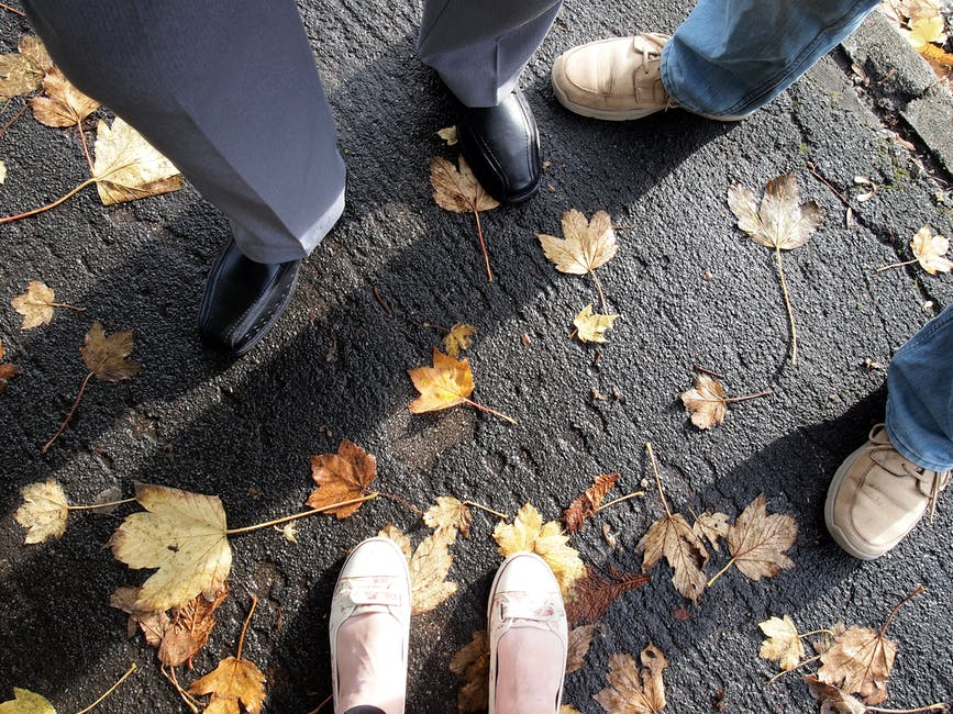 New free stock photo of feet, shoes, leaves