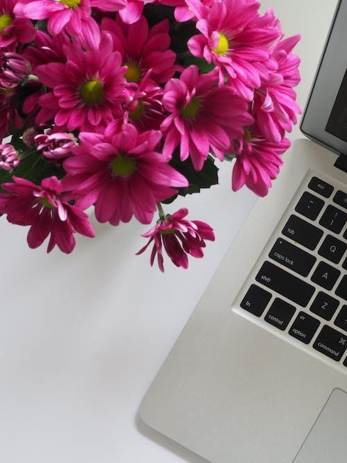 Ảnh lưu trữ miễn phí về bàn, bàn phím, bó, bó hoa