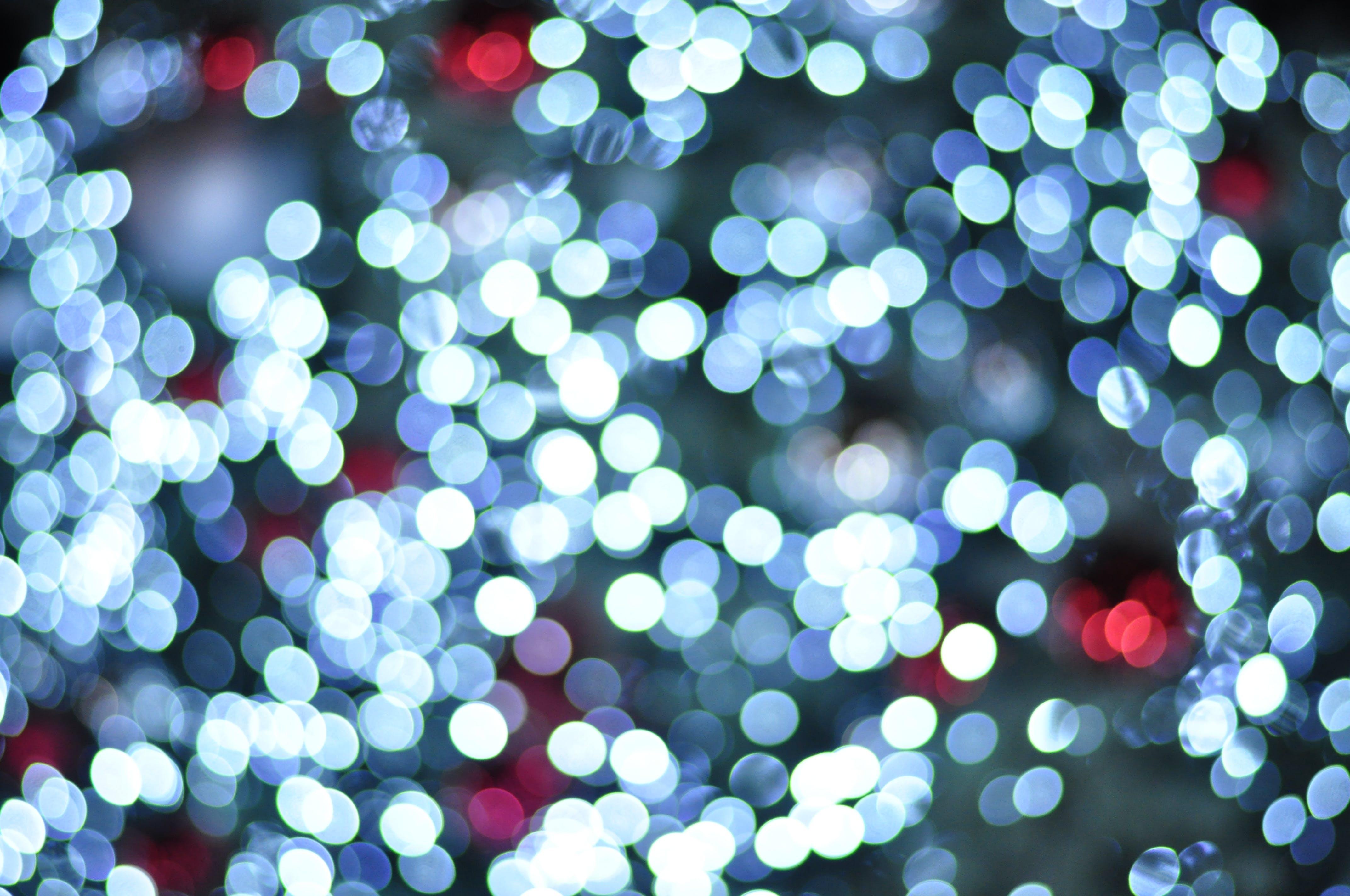 Free stock photo of blue, blur, blurred, blurred background