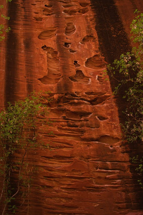 Brown Rock Formation Near Green Trees