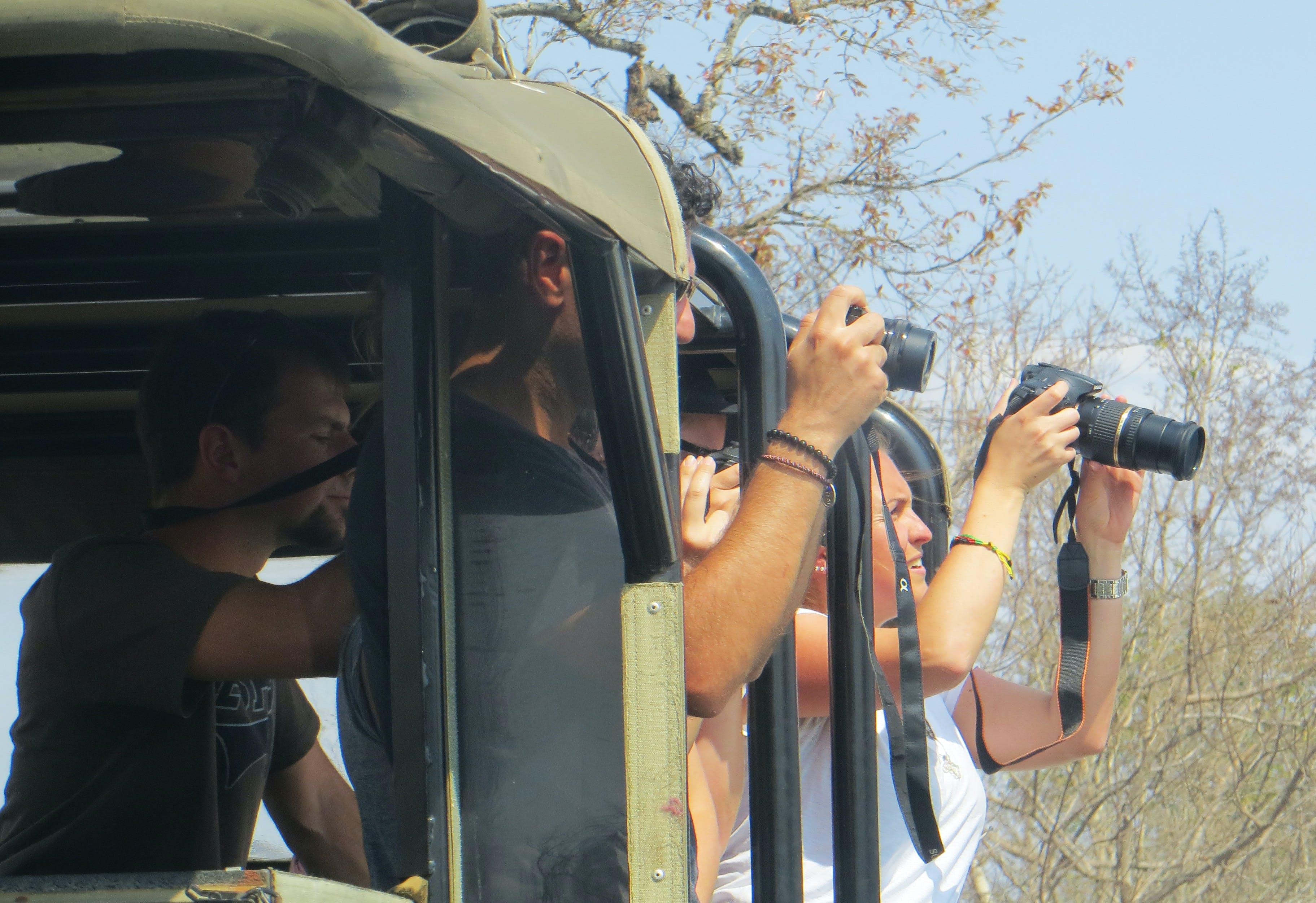 Free stock photo of tourists, cameras, safari, photos