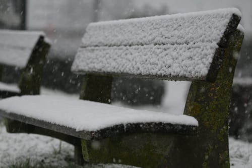 Free stock photo of bench, benches, snow, snow capped
