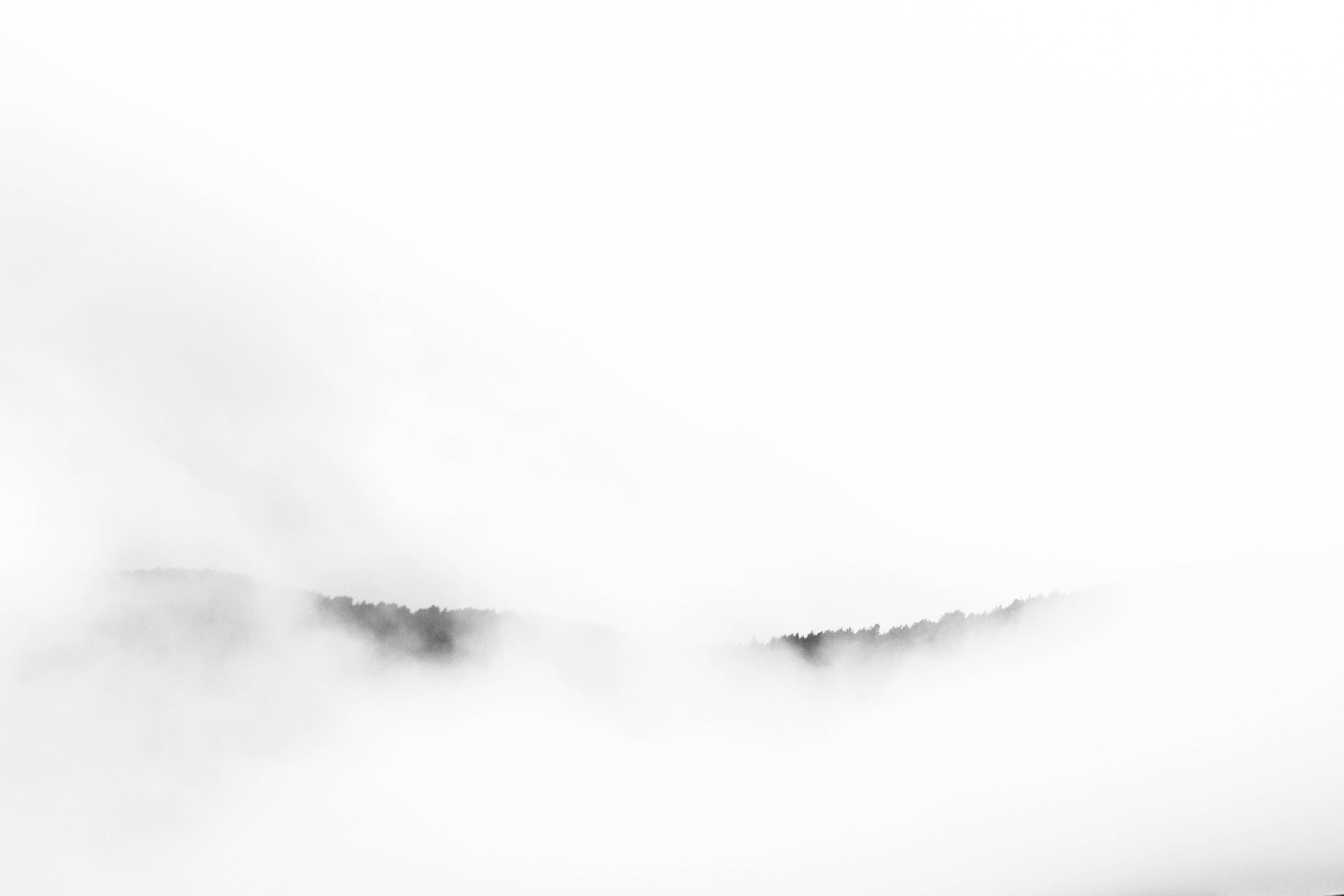 Free stock photo of arbres, automne, autumn, brouillard