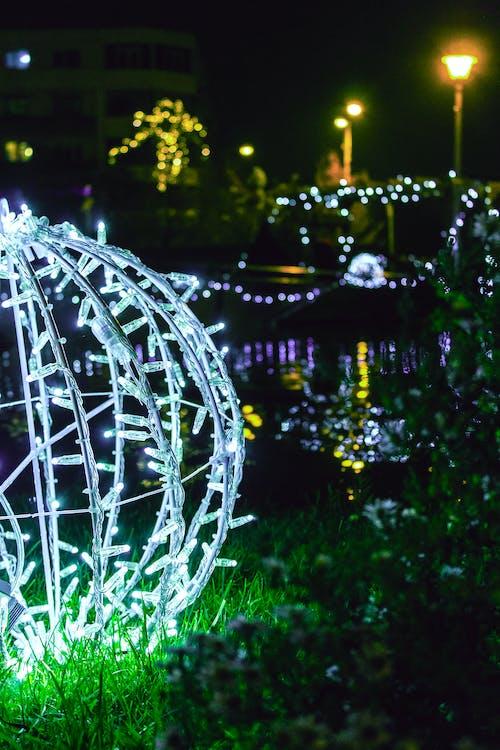 คลังภาพถ่ายฟรี ของ กลางคืน, คริสต์มาส, ชีวิตกลางคืน, มืด
