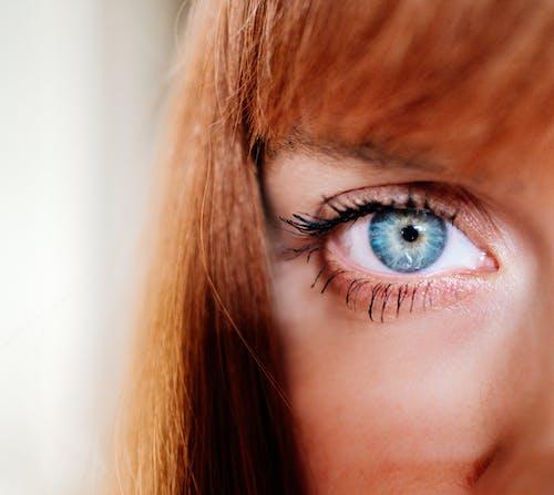 คลังภาพถ่ายฟรี ของ ตา, ตาสีฟ้า