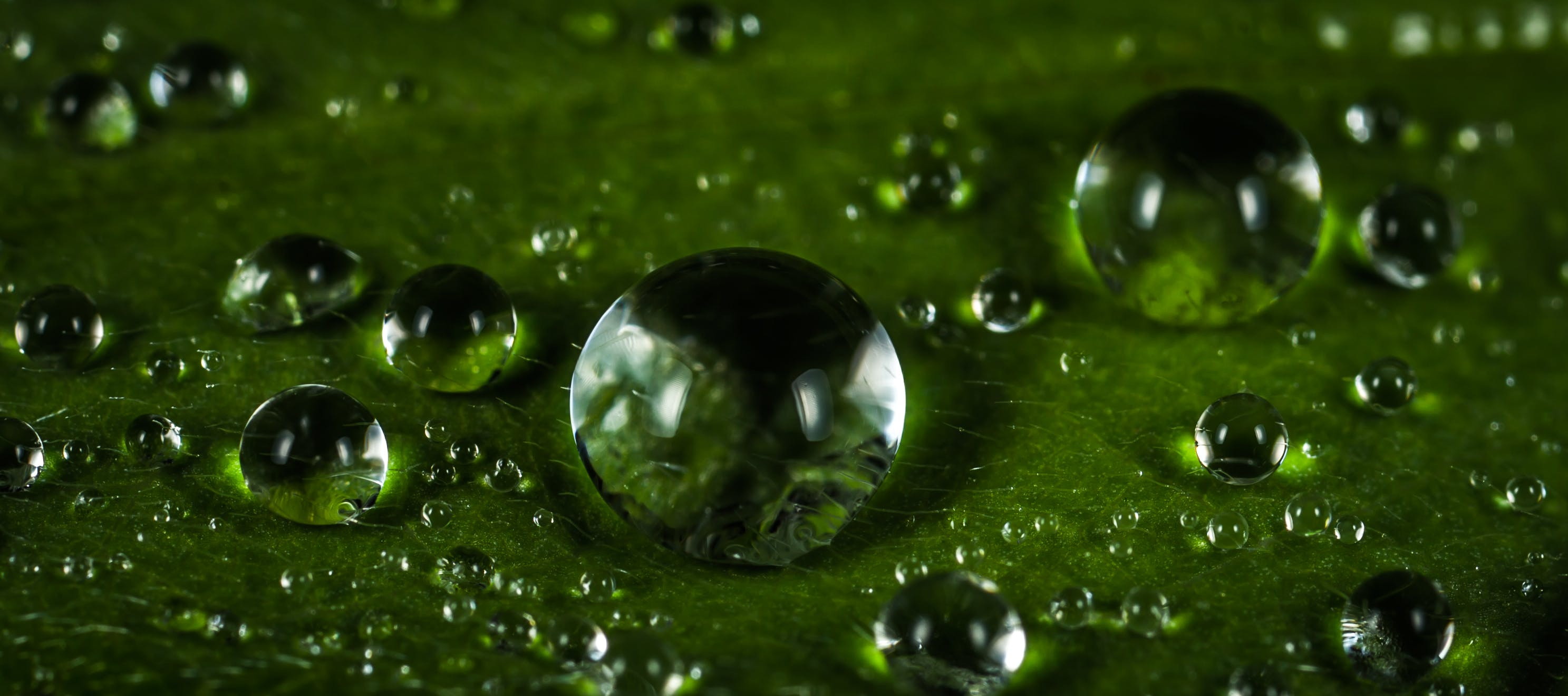 Macro Photography of Waterdrops