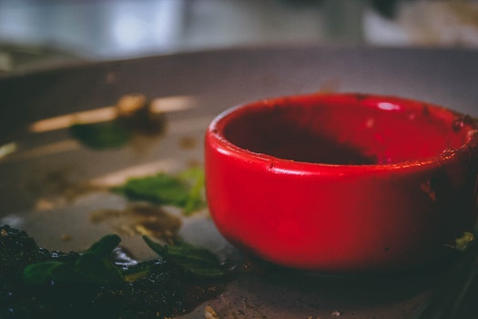 Free stock photo of food, plate, meal, tomato sauce