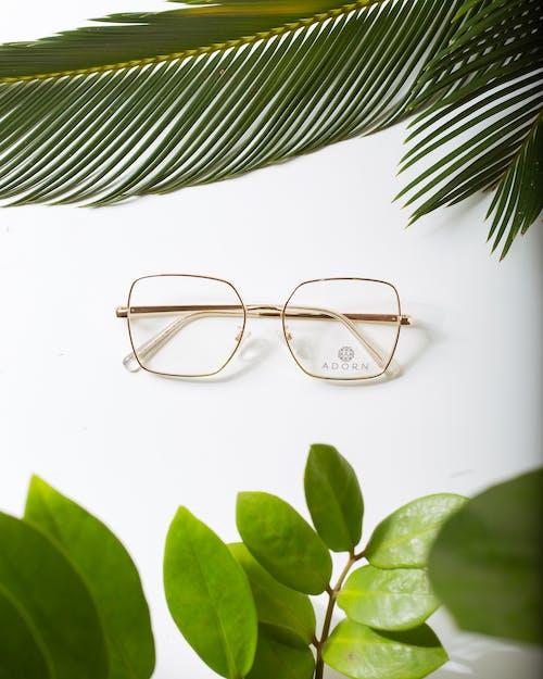Modern eyeglasses between lush green plant foliage