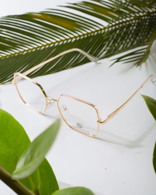Modern spectacles among tropical plant foliage on white background